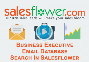 Business Executive Email Database Search