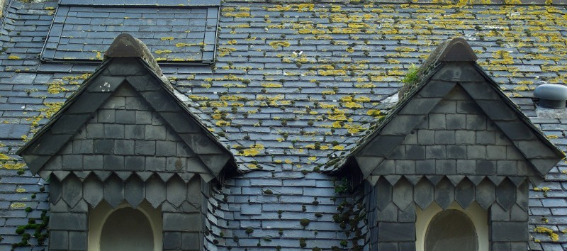 Business Email Lists of Roofing Contractors